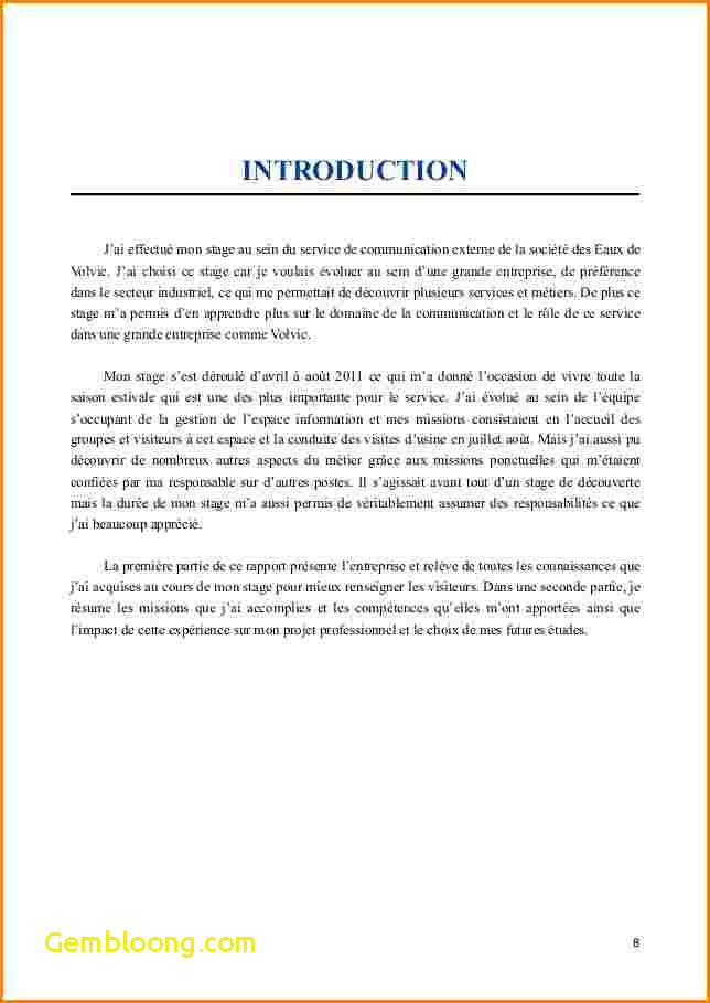 Introduction rapport de stage site web