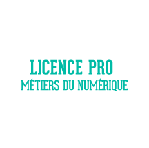 Licence pro conception site web